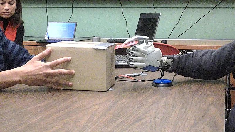 ۸۰۰px--Global-cortical-activity-predicts-shape-of-hand-during-grasping-Video2.ogv[1]